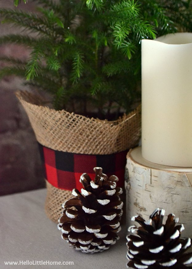 Closeup of Pine Cones, Candles, and Burlap Wrapped Pine Tree | Hello Little Home