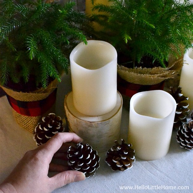 Arranging the Christmas Centerpiece