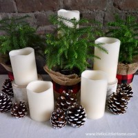 Learn how to create a chic, nature inspired holiday centerpiece!   Hello Little Home