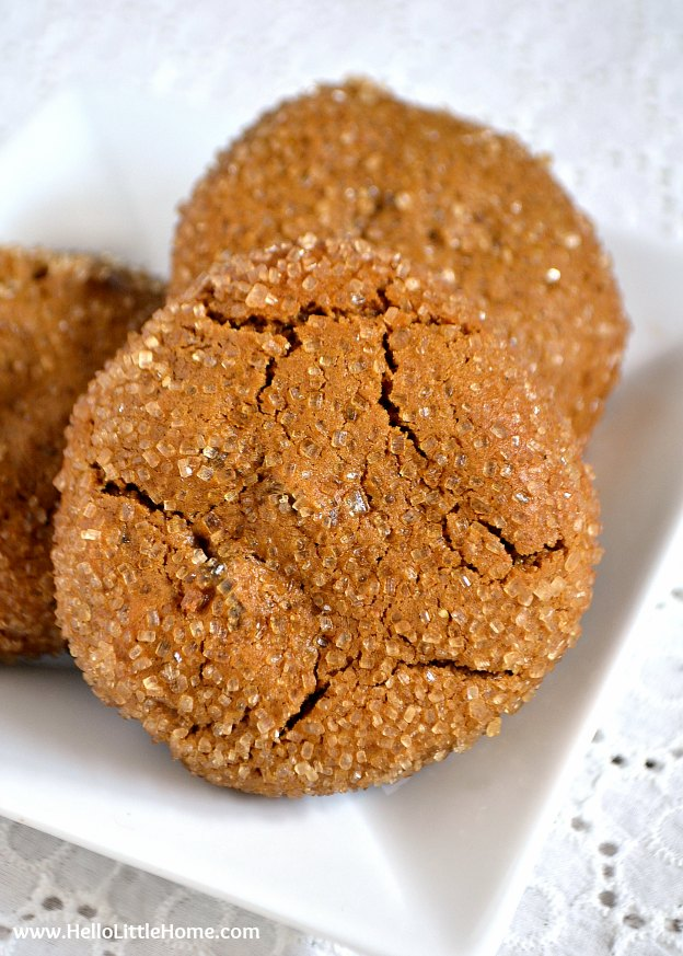 Thick and Chewy Ginger Spice Cookies ... Get this easy recipe + 100 other vegetarian winter recipes that are perfect for any occassion! | Hello Little Home