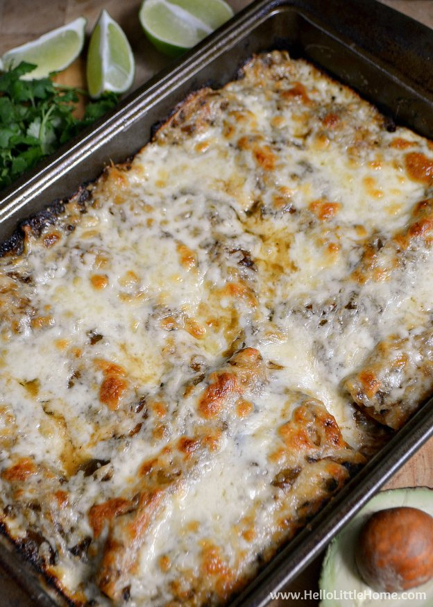 Feed a crowd with these decadent delicious Black Bean and Butternut Squash Enchiladas with Green Sauce!   Hello Little Home