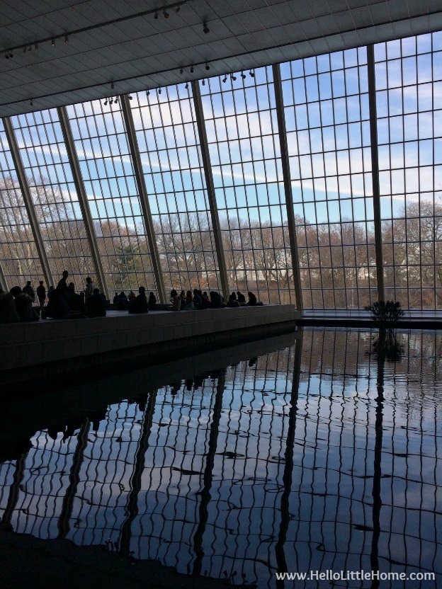 Reflecting Pool at the Met | Hello Little Home