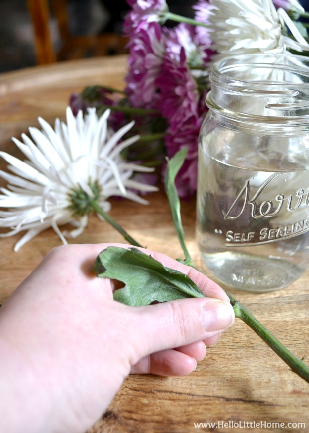 Step by step instructions for making an easy and inexpensive flower arrangement! All you need is a supermarket bouquet of flowers and a collection of glass jars! | Hello Little Home