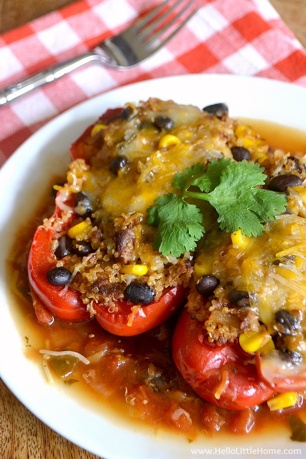 Tex Mex Stuffed Peppers in the Crockpot ... Get this easy recipe + 100 other vegetarian winter recipes that are perfect for any occassion! | Hello Little Home