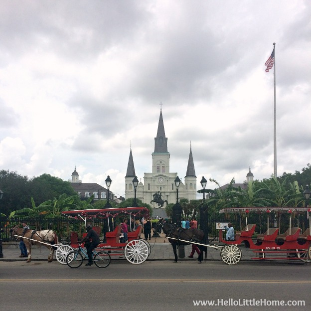 Spend a weekend in New Orleans with me! Exploring the French Quarter, one of my favorite and most popular neighborhoods in NOLA! Beautiful St. Louis Cathedral | Hello Little Home