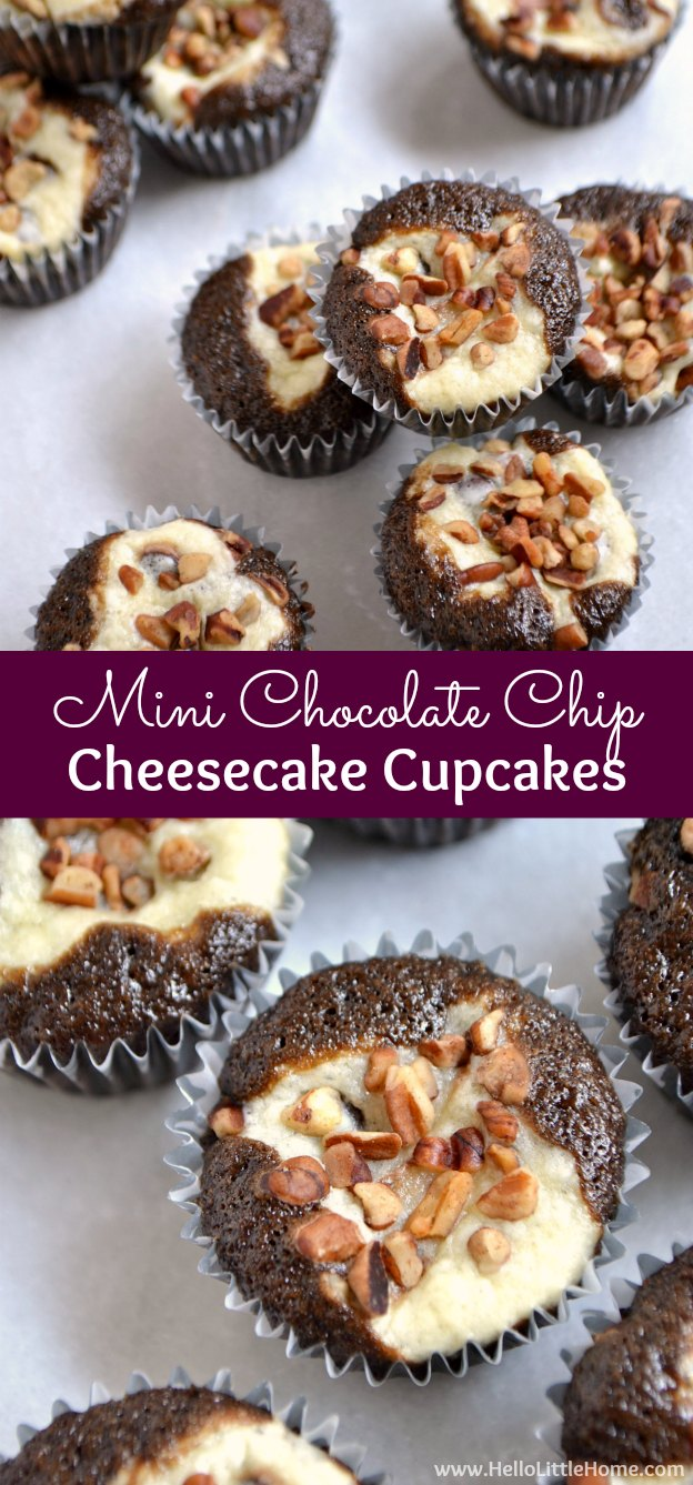 Mini Chocolate Chip Cheesecake Cupcakes ... a delicious holiday recipe that's a great alternative to traditional Christmas cookies! | Hello Little Home