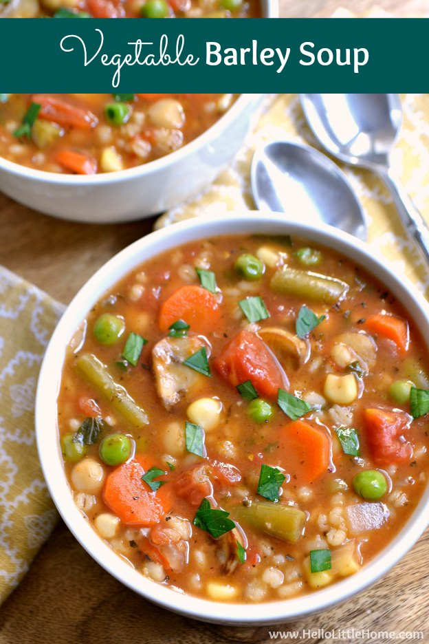 Vegetable Barley Soup ... a thick, hearty vegetarian soup recipe that will warm you up on the coldest of days! This easy soup recipe is packed with rich, Italian flavors your whole family will love!   Hello Little Home