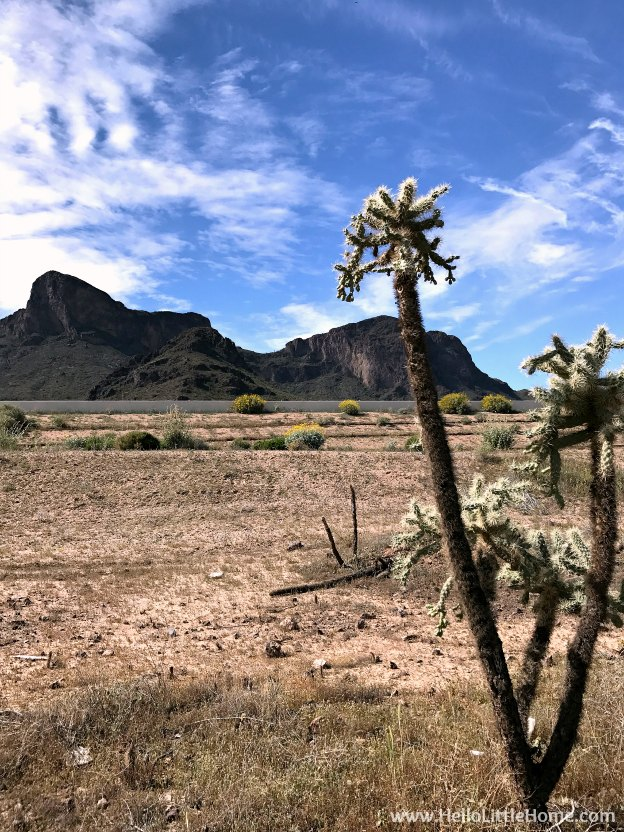 Exploring Picacho Peak State Park during an El Paso to Phoenix Road Trip! Travel from Texas to Arizona with lots of fun stops along the way, including White Sands National Monument and MLB spring training! Find out the best things to do in El Paso and Phoenix, from can't miss sights to delicious restaurants! | Hello Little Home