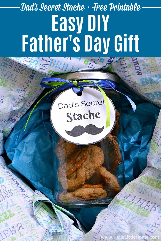 Easy Diy Father S Day Gift Idea Dad S Secret Stache Hello
