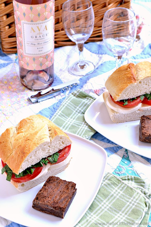 5 easy picnic ideas! Simple DIY outdoor picnic ideas for the perfect summer day at the park, beach, or even backyard. Easy picnic food ideas and recipes for kids and adults, what to pack, and more ... perfect for a fun and cheap summer picnic escape!   Hello Little Home