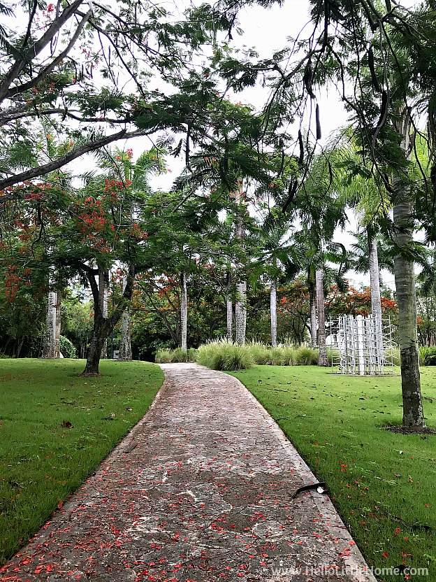 A Flower Covered Path in the Sculpture Botanical Garden at Museo de Arte de Puerto Rico