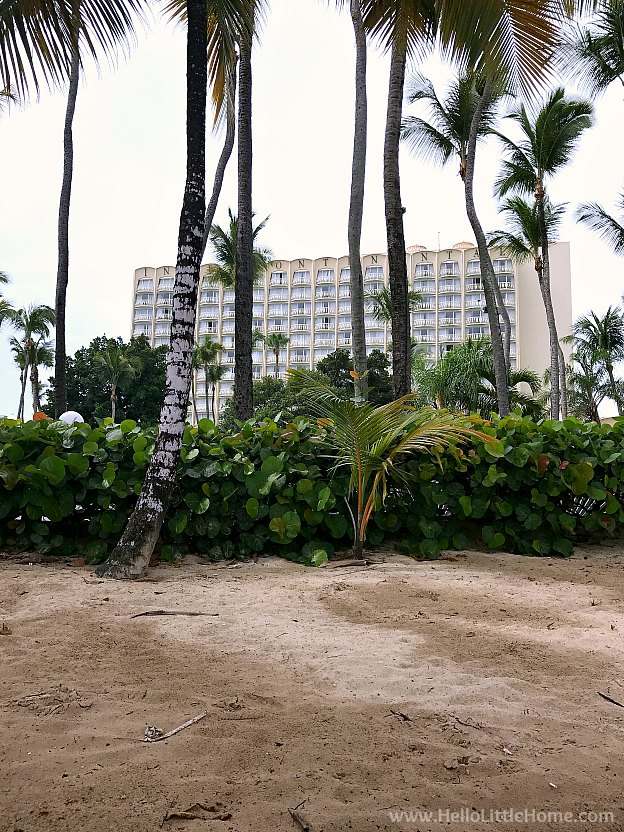 Where to Stay in San Juan, Puerto Rico! View of the InterContinental San Juan from Isla Verde Beach. | Hello Little Home