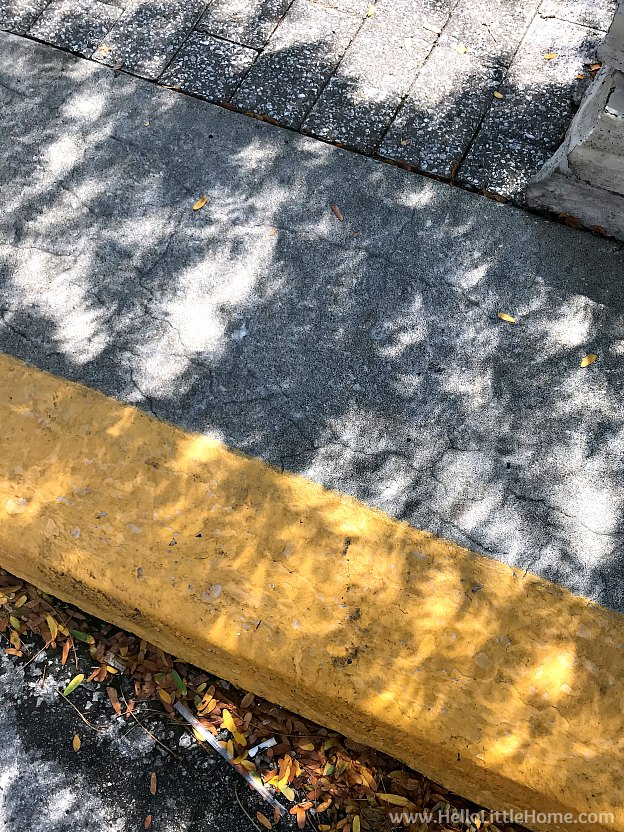 Watching the eclipse in Kansas City, Missouri