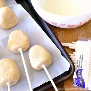 Cake pops with sticks inserted. | Hello Little Home