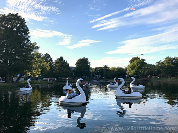 Swan Boats at the State Fair of Texas