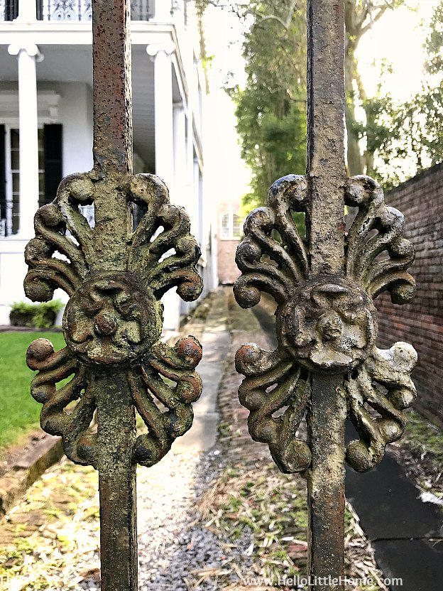 Wrought iron gate detail in front of the Buckner Mansion in the NOLA Garden District