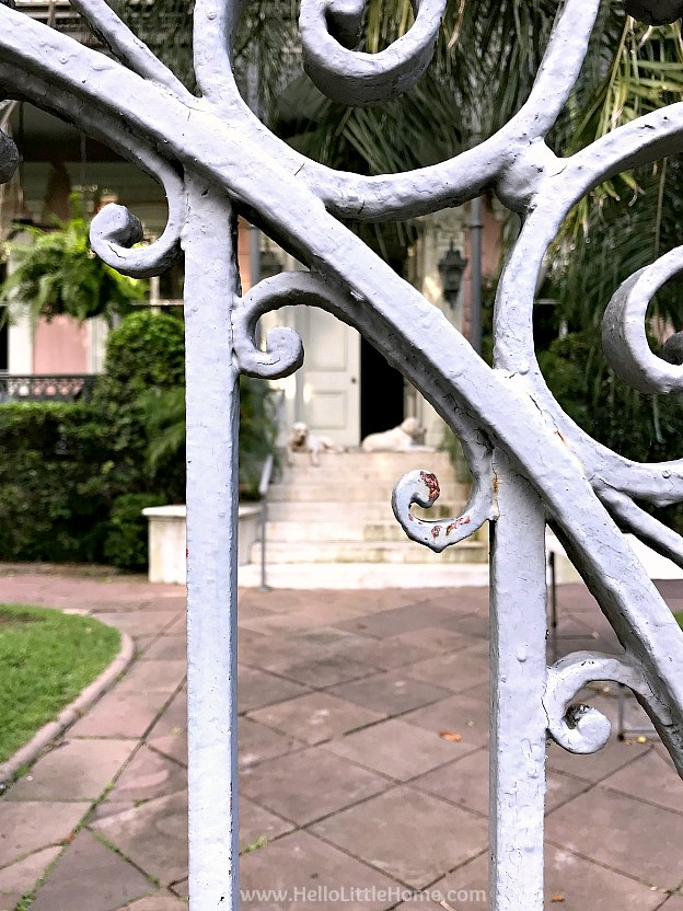 Detail of Carroll Crawford House gate with dogs in the background.