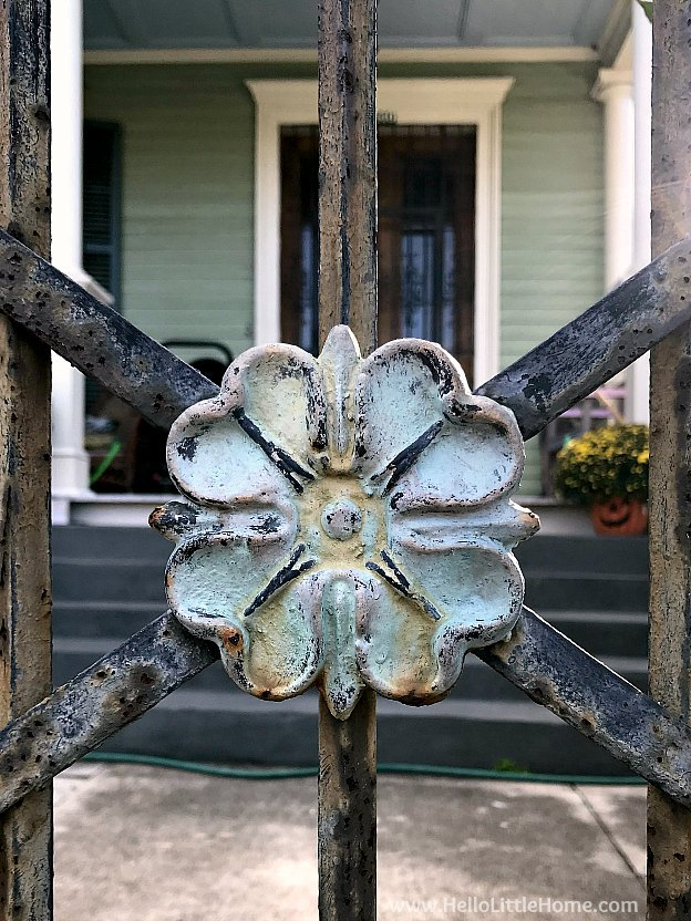 Beautiful wrought iron gate detail in New Orleand Garden District