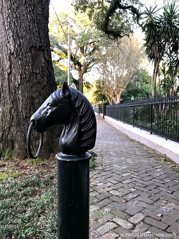 An old fashioned horse hitch in the New Orleans Garden District