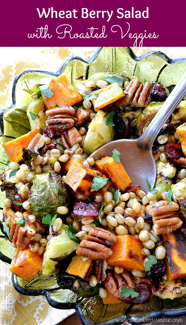 Wheat Berry Salad Recipe with Roasted Vegetables and Maple Vinaigrette! Looking for wheat berry recipes? Learn how to cook wheat berries and try a healthy wheat berry salad recipe that's packed with roasted veggies, like Brussels sprouts and sweet potato, and fall flavors, like dried cranberries and roasted pecans. This wheatberry salad is hearty, perfect for dinners or lunches, and is vegan! | Hello Little Home