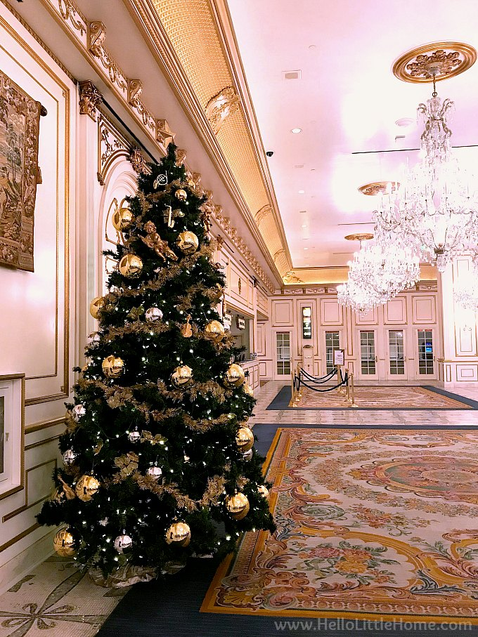 elegant christmas tree at paris casino in las vegas - Las Vegas Christmas Decorations