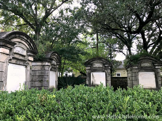 Family Vaults Surrounded by Trees and Plants in Lafayette Cemetery No. 1 New Orleans