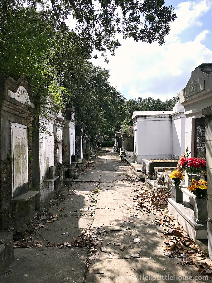 Path in Lafayette Cemetery No. 1 Surrounded by Family Vaults