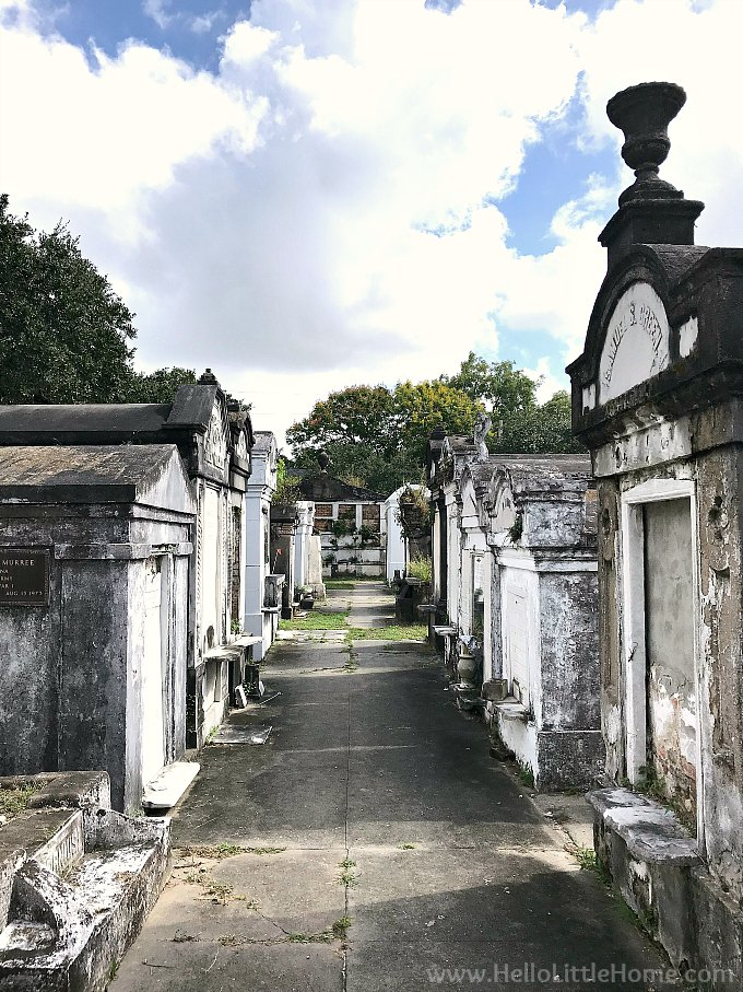 Walkway Surrounded by Family Vaults in Lafayette Cemetery in NOLA's Garden District