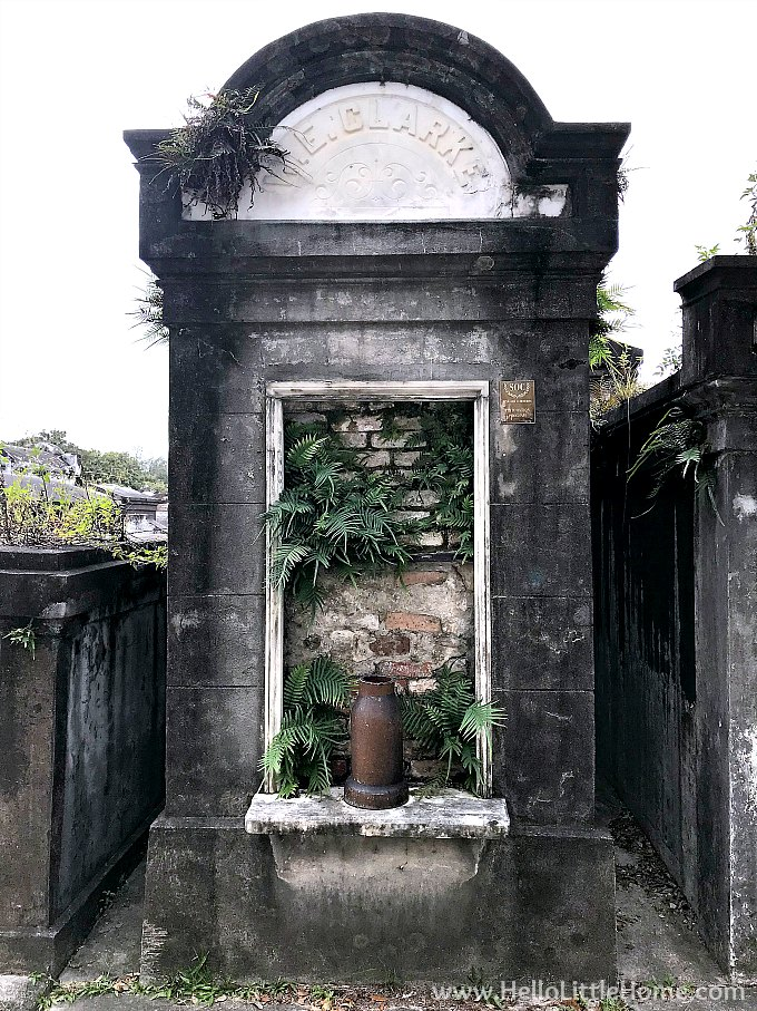 Family Vault with Plants Growing Out of It in Lafayette Cemetery No. 1 New Orleans