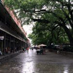 A rainy street in New Orleans in the French Quarter