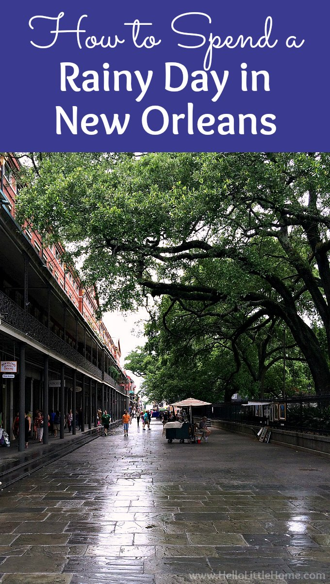 10 best things to do in new orleans on a rainy day for Best things to do in french quarter