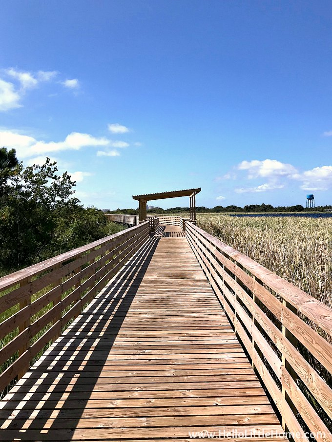 The Twin Bridges Trail in Orange Beach, AL.