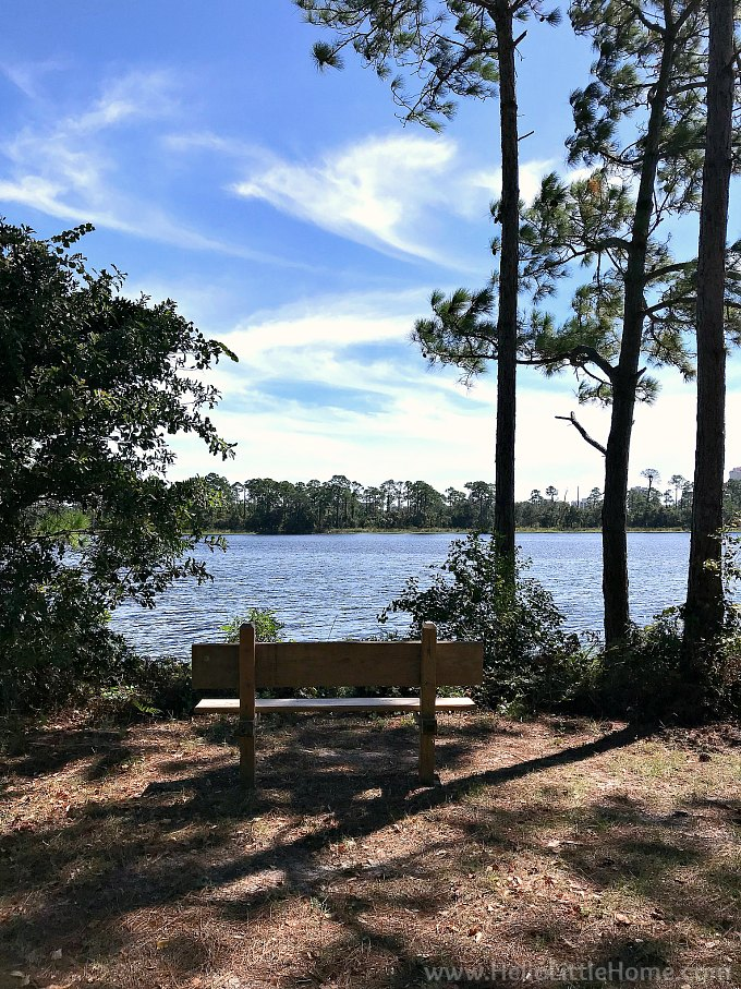 A bench overlooking a lake on the Hugh S Branyon Backcountry Trail.