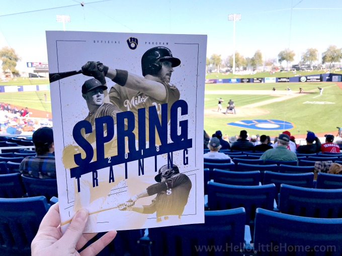 A Brewers Spring Training Program.
