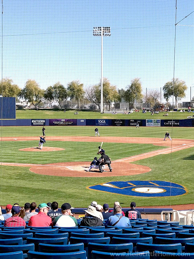 Baseball players on the field at a Cactus League Spring Training game in Arizona.