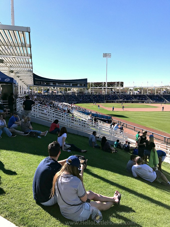 Fans sitting on the grass at a Cactus League Stadium in Phoenix, Arizona.