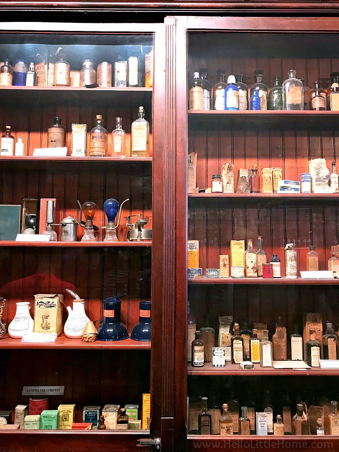 Bottles of medicinal ingredients lining the shelves at the New Orleans Pharmacy Museum