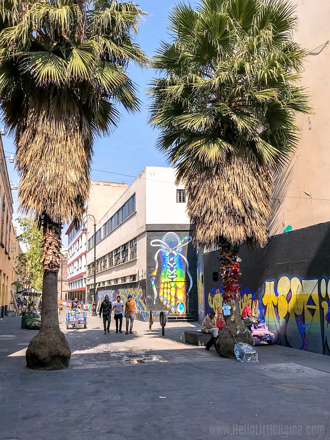 Calle Regina Street Art in the Historic Center of Mexico City.