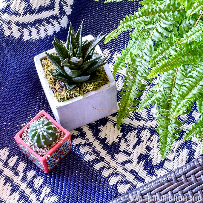 Accessories for a small patio: a rug, table and chairs, and plants.