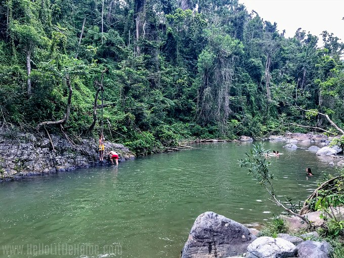 A swimming hole and rope swing on the Angelito Trail in El Yunque National Forest.