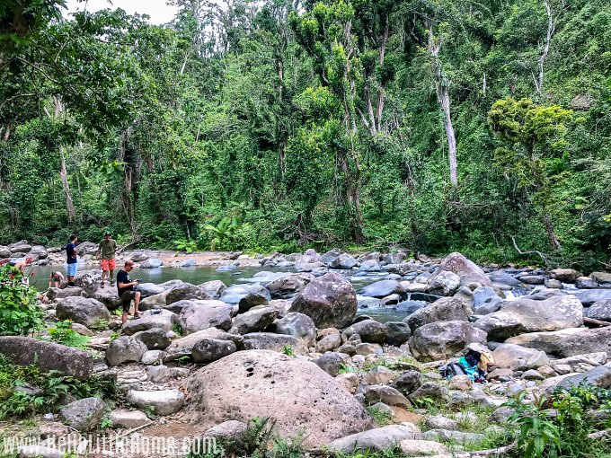 The rocky Mameyes River on the Angelito Trail in El Yunque National Forest.