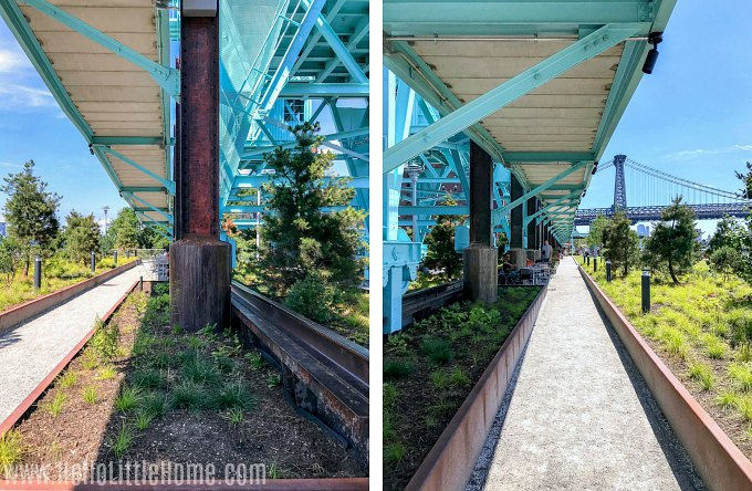 Paths below the Elevated Walkway in Domino Park Brooklyn.