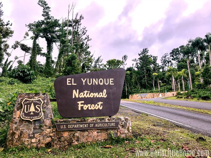 Entrance sign to El Yunque National Forest.