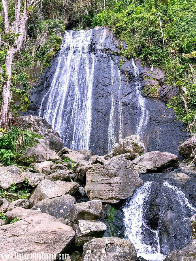 Beautiful La Coca Falls in El Yunque National Forest.