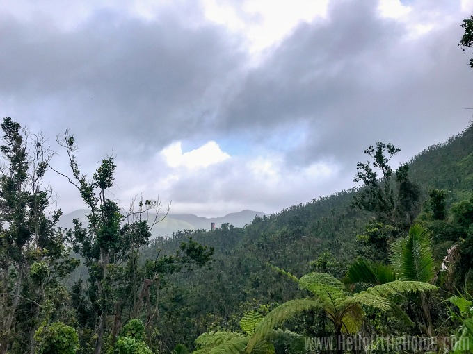 A view of El Yunque Rainforest with the Yokahu Tower in the distance.