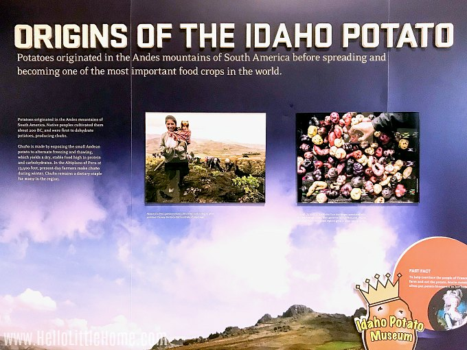 Origins of the Idaho Potato Display.