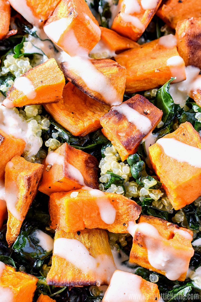 Closeup of Kale and Quinoa Salad with Sweet Potatoes.