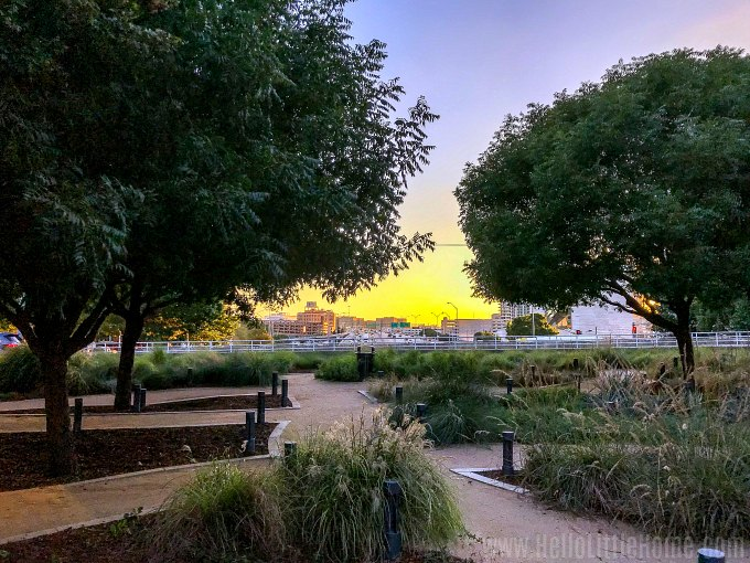 A sunset in Klyde Warren Park in Dallas.