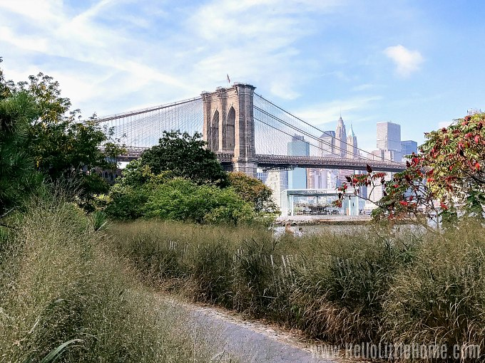 A view with the Brooklyn Bridge in the distrance from a waterfront park.