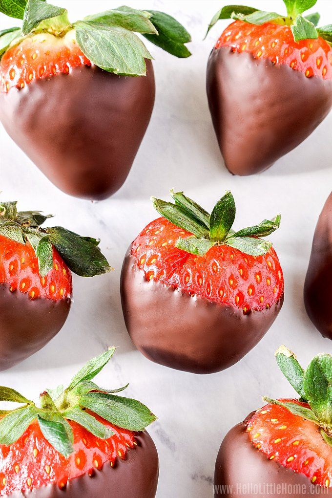 A tray of chocolate dipped strawberries.